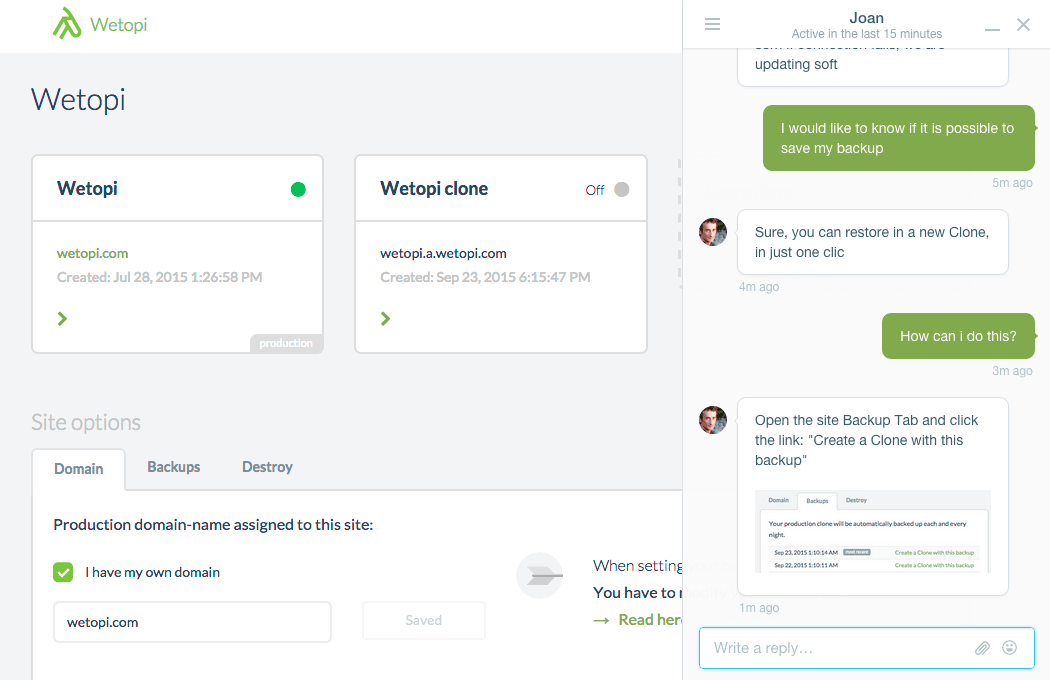 WordPress Real time support