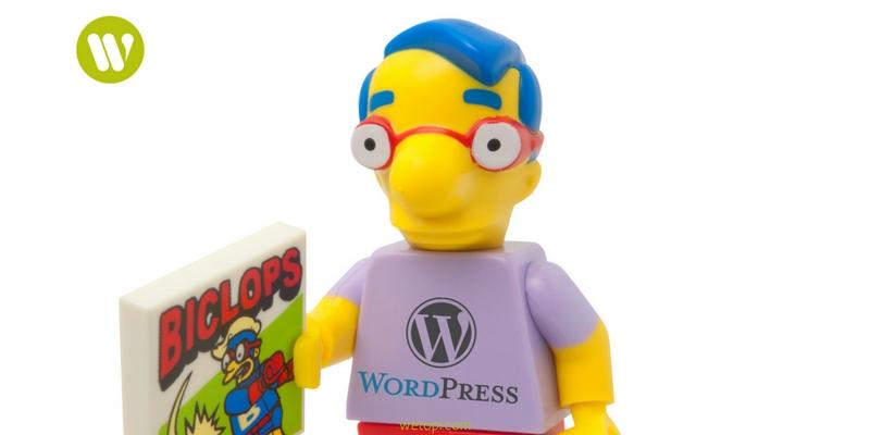 crear un blog WordPress con la ayuda de un profesional