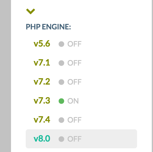 Switch from php 7.3 to php 8.0