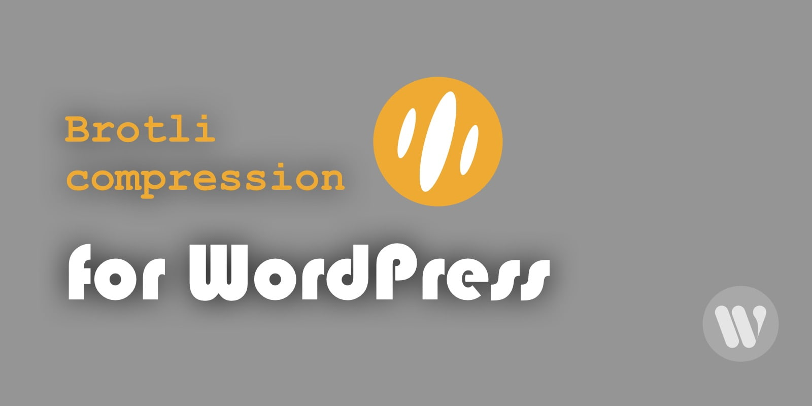 brotli-compression-for-wordpress-1.jpg